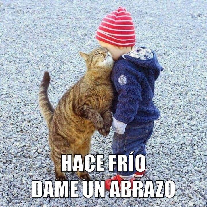 Pin De Elenus Gonzalez En Saludos Memes De Frio Memes Espanol Graciosos Memes Aula