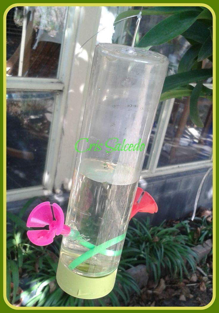 bebedero colibries con envase de shampoo de Natura