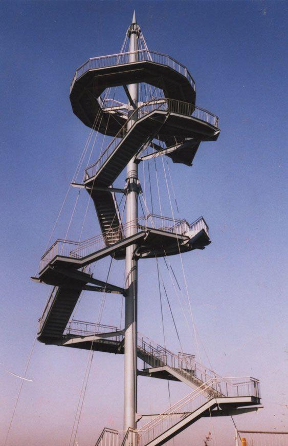 12 torres de observación, para proteger la Realm