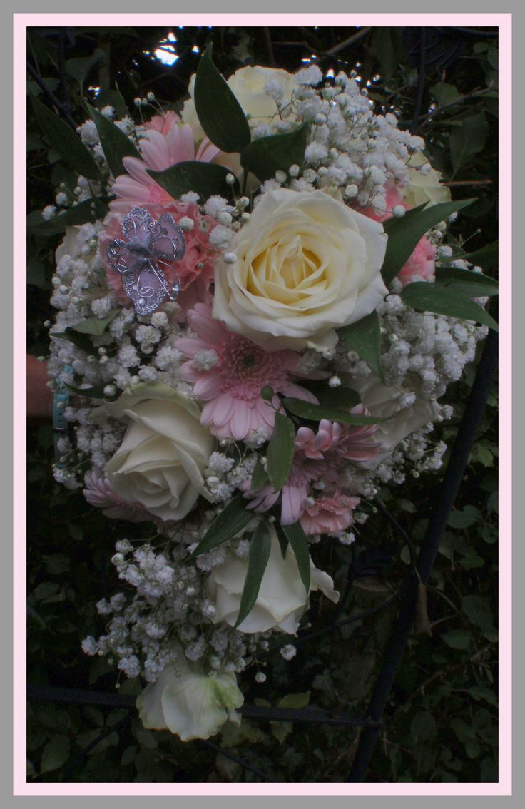 Bridal teardrop bouquet with pale pink carnations, germinis, and white roses plus gypsophila.