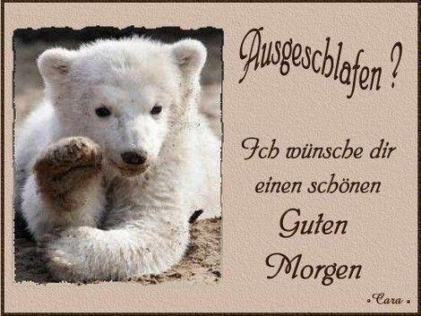 guten morgen - http://guten-morgen-bilder.de/bilder/guten-morgen-284/