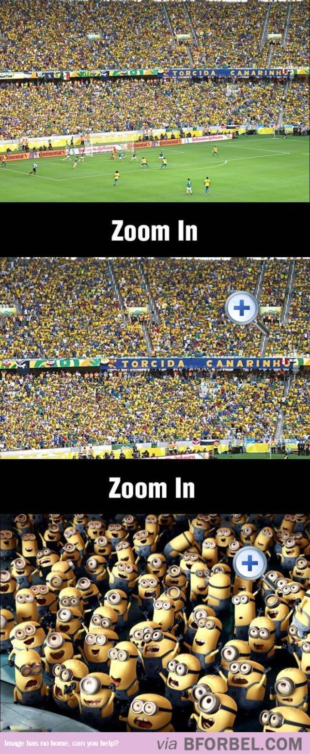 Zooming In On The World Cup Fans…