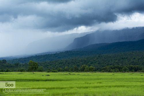 Before Raining! (ខតតកពត) by MardySuongPhotography  cambodia green kampot khmer landscape mardy suong mardy suong photography rain rice field Before Rai
