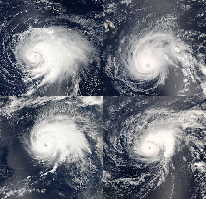 Every satellite photo of a hurricane looks a lot like the last one. The images above, taken with NASA Goddard Spaceflight Center's MODIS instrument aboard the Terra and Aqua satellites, are a case in point.    The striking similarity has to do with how hurricanes form, said meteorologist John Knaff of the National Oceanic and Atmospheric Administration.