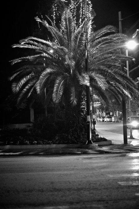 4.   Moments of my life.   Phoenicia   Φοίνικας