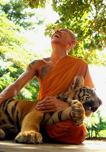 laughing monk with tiger