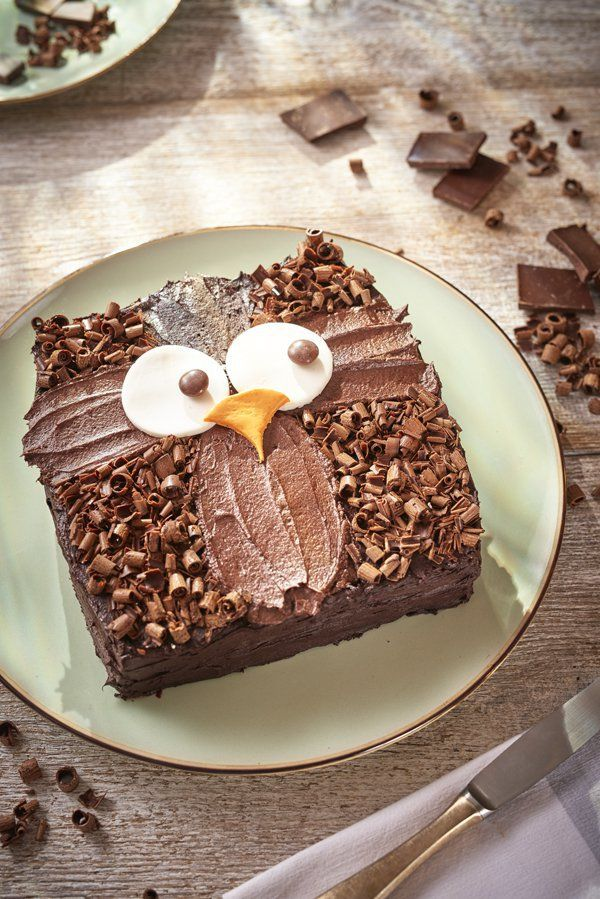 How to make an owl cake. Easy decoration idea for an owl birthday cake, made using a simple basic chocolate sponge recipe (square) and decorations to make an owl. So cute