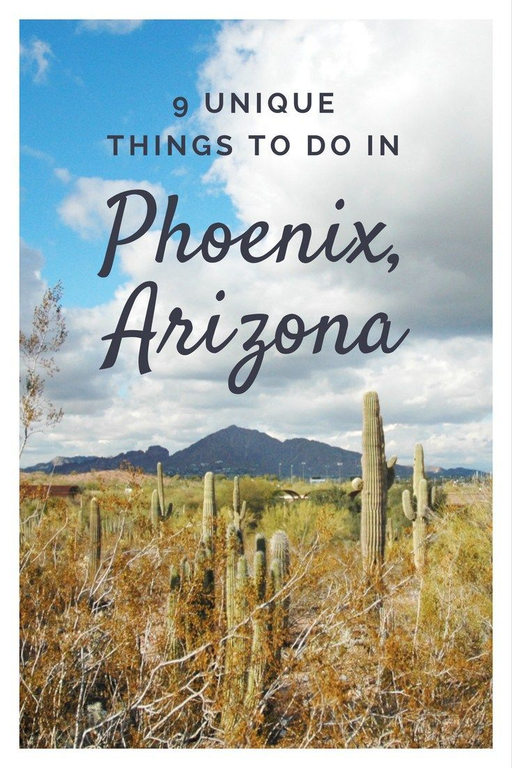 Unique things to do in Phoenix, Arizona - Desert Botanical Garden