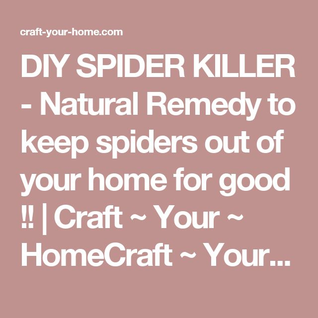 DIY SPIDER KILLER - Natural Remedy to keep spiders out of your home for good !! | Craft ~ Your ~ HomeCraft ~ Your ~ Home