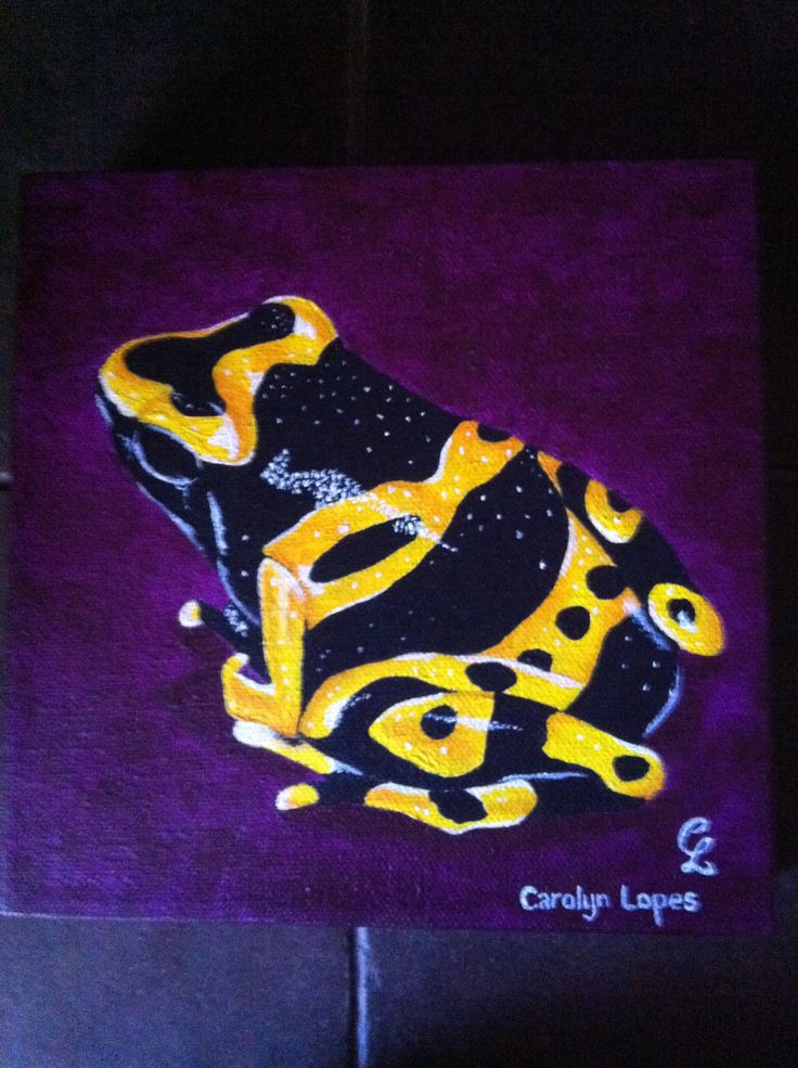 Frog #6 by Carolyn Lopes
