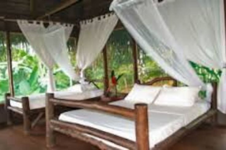 Appartement à dominical, Costa Rica. Close to Corcovado National park and only 2 hours from dominical, Our prívate jungle bungalows are located within  a private wildlife refuge, so our guests can experience the beautiful local wildlife while being 1 minute walk from many secluded be...