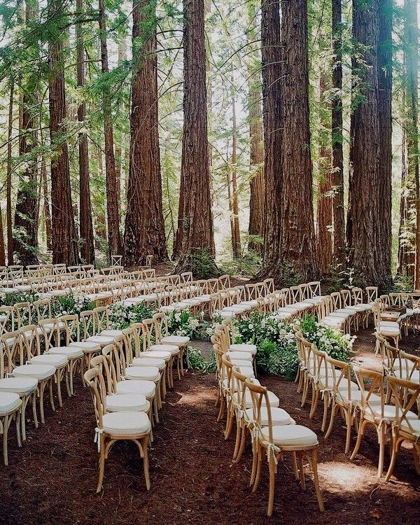 Outdoor Wedding Ceremony Doors: Rustic Boho Out-of-doors Forest Woodland Marriage Ceremony