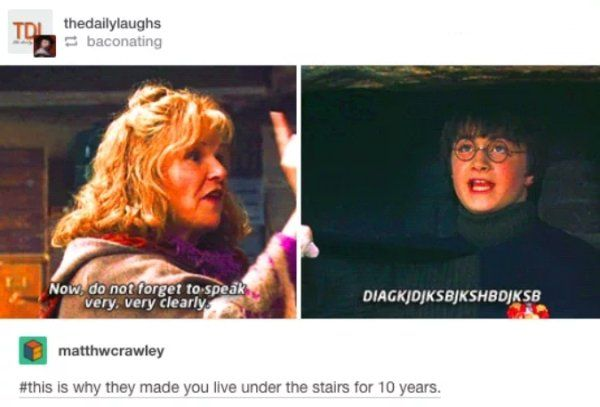 35 Funny Memes Pictures Harry Potter Memes Every Muggle Will Appreciate Harry Potter Fandom Harry Potter Universal Harry Potter Memes