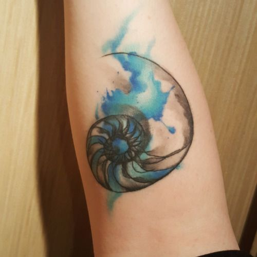 Watercolor nautilus by Vinh Huynh at Black and Blue Tattoo in San Francisco