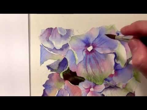 How to paint hydrangeas in watercolor - Online Tutorial and Watercolor DVD - YouTube