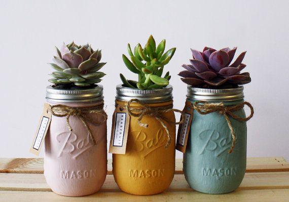 Il sagit dune collection assortie de succulentes pots (rose, orange, oeuf de…