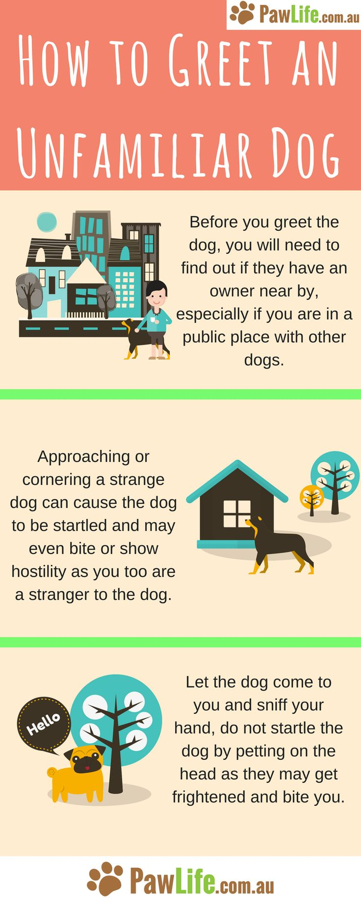 There is a safe way to do so without causing a tense situation and to reduce the risk of the unfamiliar dog lashing out.