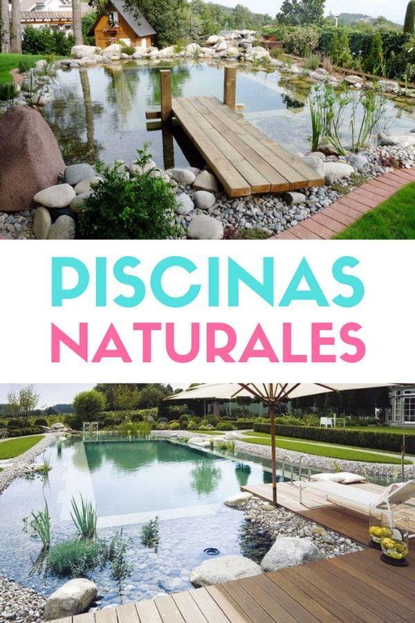 Diseno Y Construccion De Piscinas Naturales