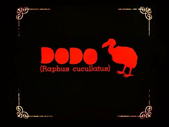 PRETTY - UGLIES: Magda Żmijowska freaky illustrations - osobliwe ilustracje: Dodo animation