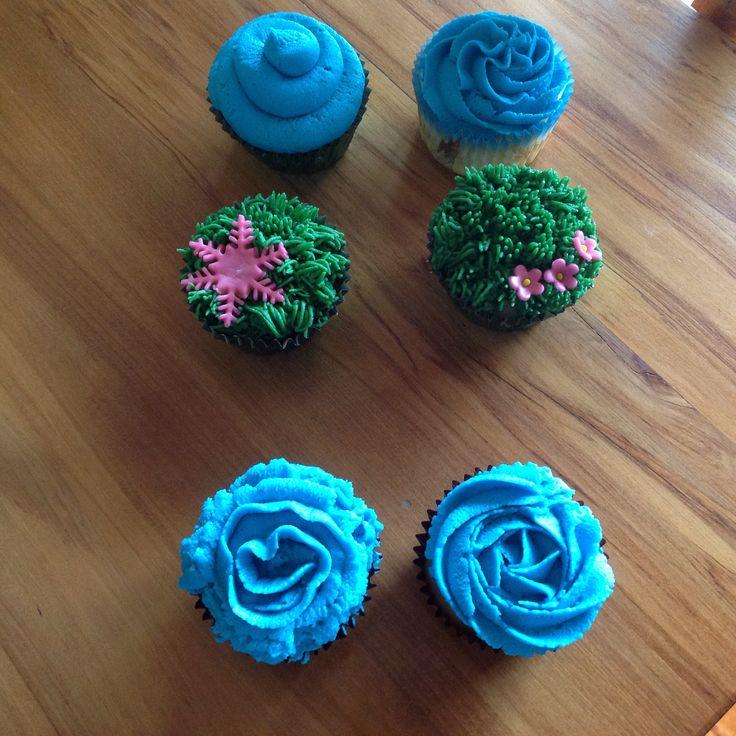 Cupcakes January 2015