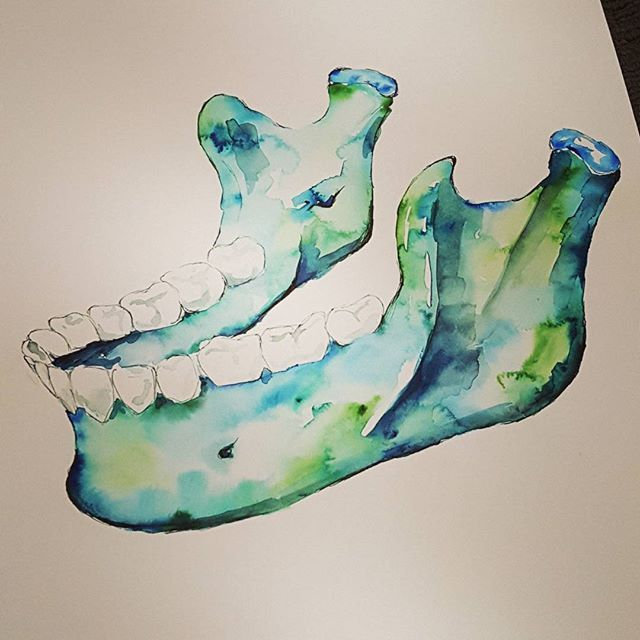 Watercolour Anatomy art jaw mandible