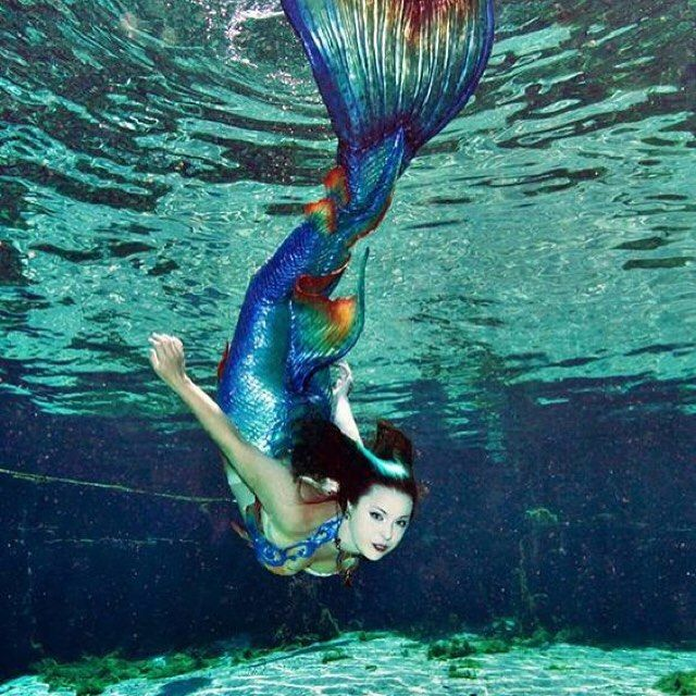 The beautiful Mermaid Taven from Merbella studios with one of her fabulous tails!