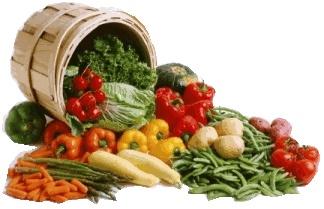 Great resource for organic heirloom gardening!