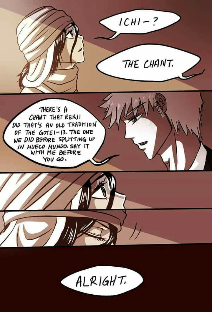 bleach ichiruki essay