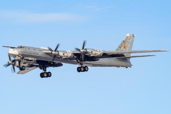 RF-94183 - Russia - Air Force Tupolev Tu-95MS photo (74 views)