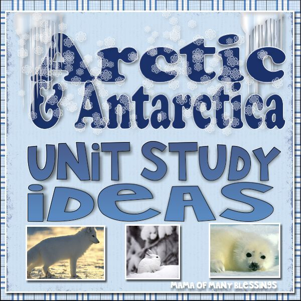 TONS of Arctic and Antarctic Unit Study Ideas! Including food ideas, free worksheets and printables, lesson plan ideas, books, tot trays, and more!!