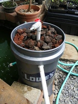 DOMEGROWING: Built a better pond filter yesterday