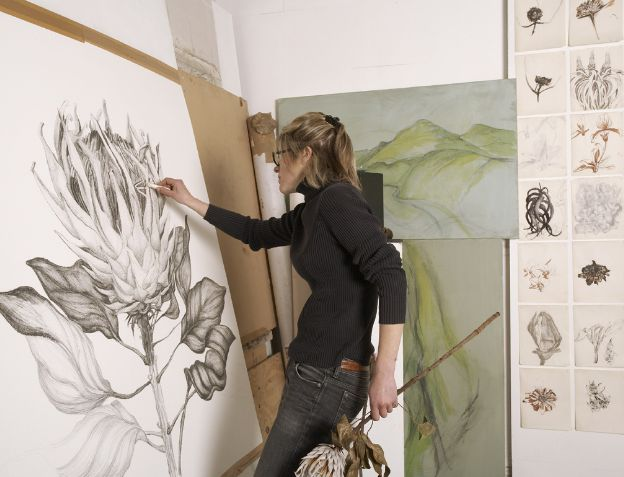 Sarah Graham . Beautiful botanical drawings and paintings