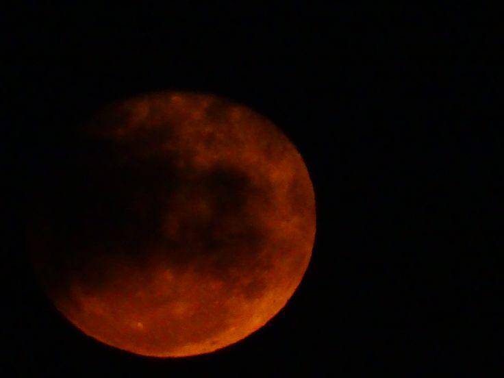 "Luna rossa Chi me sarrà sincera? Luna rossa Se n'é ghiuta l'alta sera Senza me vedè E io dico ancora ca ""Aspietta a me Fore'o balcone Stanotte 'e ttre E prega 'e sante Pe'me vedê Ma nun ce stà nisciuna""  LUCIO DALLA"