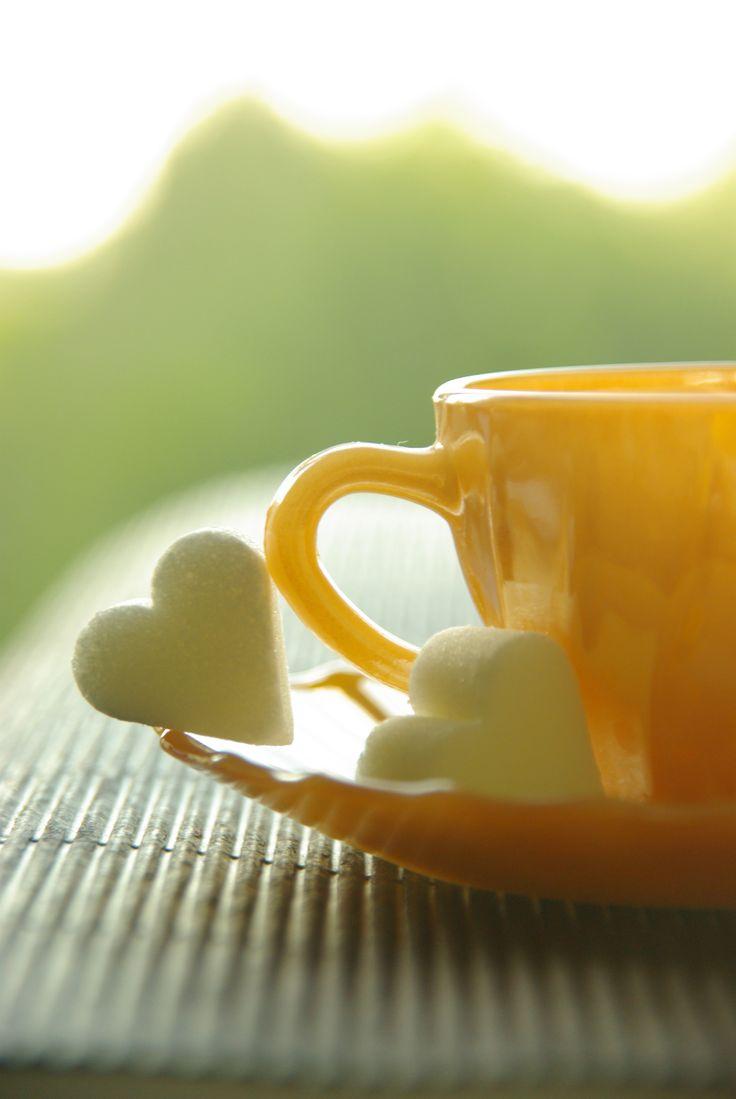♡ love tea