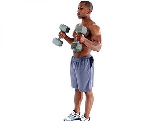 The Powerlifting Training Plan