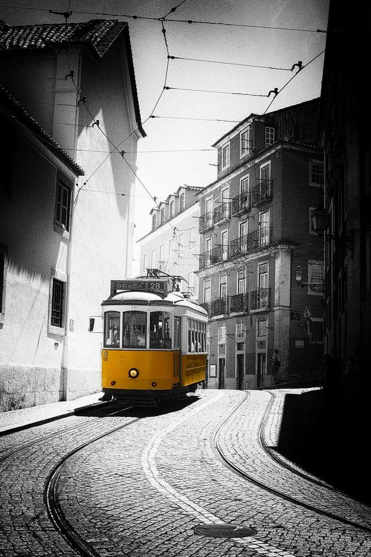 Lisboa Delight by Anthony W. S. Soo