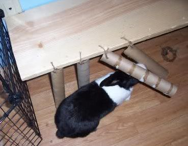 Cardboard Roll Rabbit Curtain