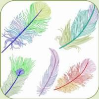 DS1134 COLOURFUL FEATHERS  stitchdelight.net  $16