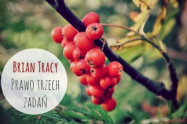 Czas | Prawo trzech zadań Briana Tracy