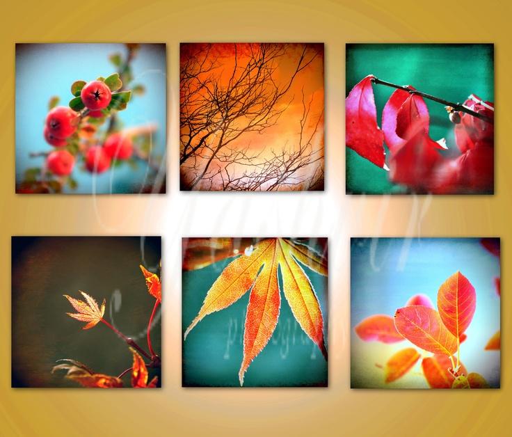 Rustic fall leaves- Grunge / rustic fine art photography prints of leaves. Set of six prints.. $37.00, via Etsy.