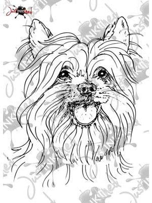 54 best Jorkshire Terrier images on Pinterest | Yorkie, Yorkies and ...