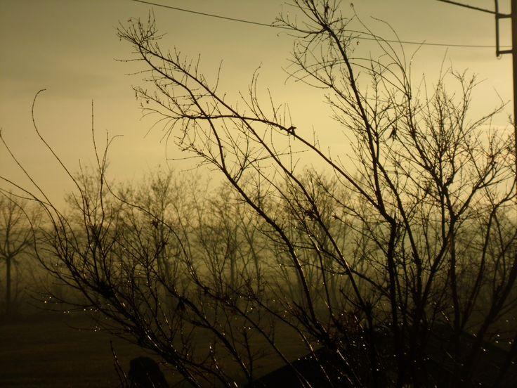 pianura piovosa