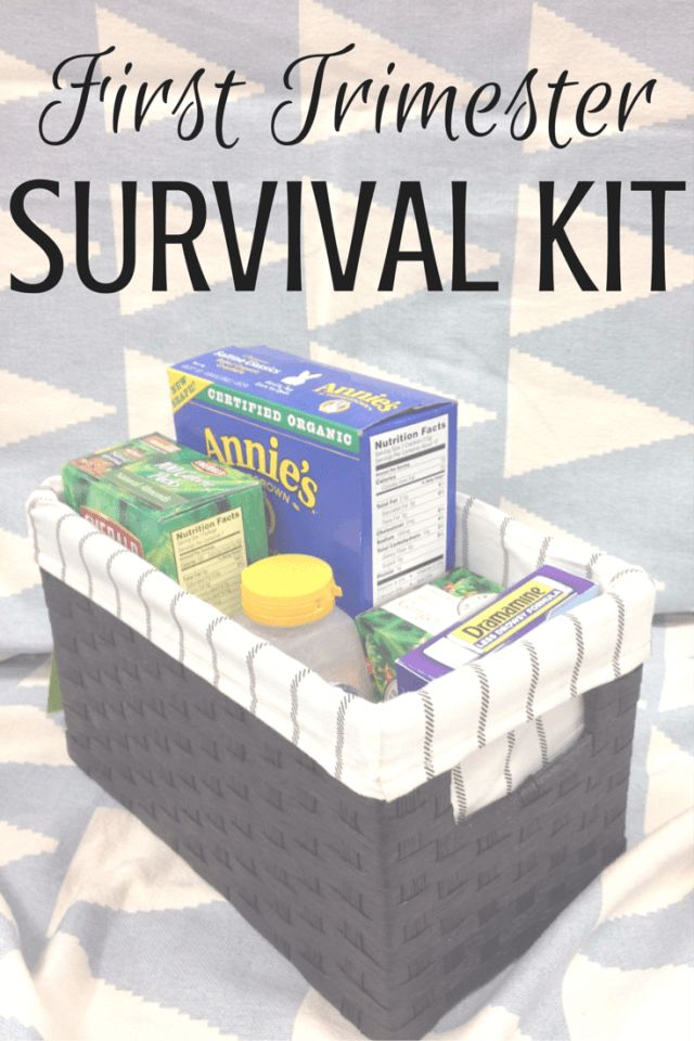 First Trimester symptoms got you down? Not to worry! This first trimester survival kit will take care of those early pregnancy symptoms in a flash!