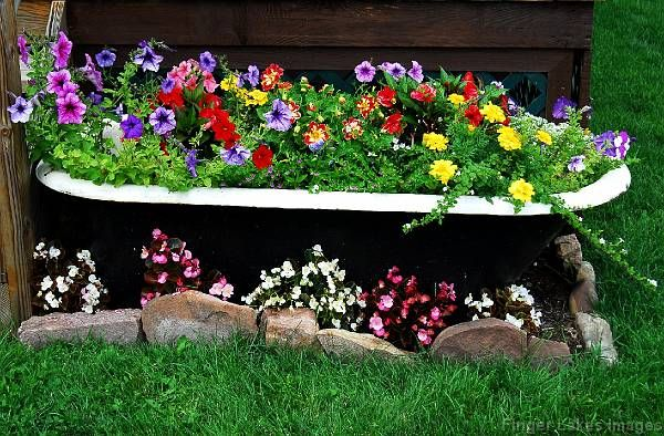 Bathtub turned into a planter! Want to do this with our old tub up against the garage!