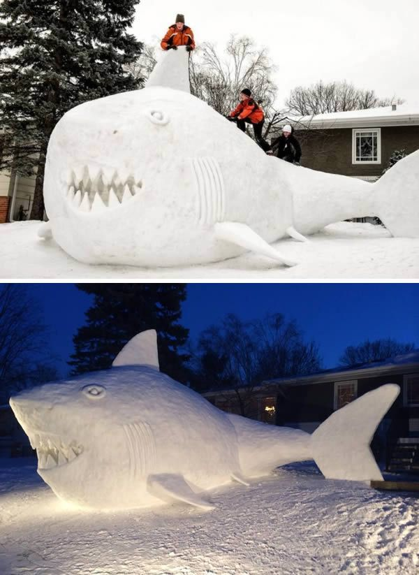 13 Coolest Yard Snow Sculptures - ODDEE...Three New Brighton brothers took snow creation to a whole new extreme. Trevor, Austin, and Connor Bartz spent 95 hours making this 10 foot snow shark in their front yard!
