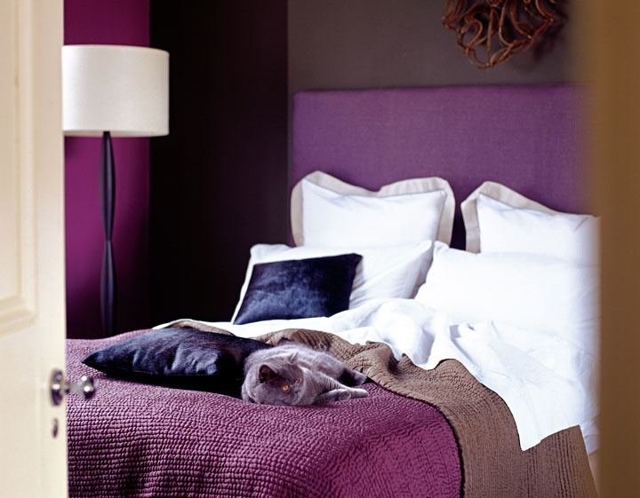 There Is Something Rich And Opulent About The Colour Purple, It Makes You  Think Of