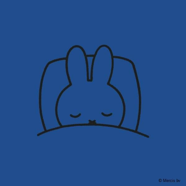 Today Miffy didn't even open the curtains.