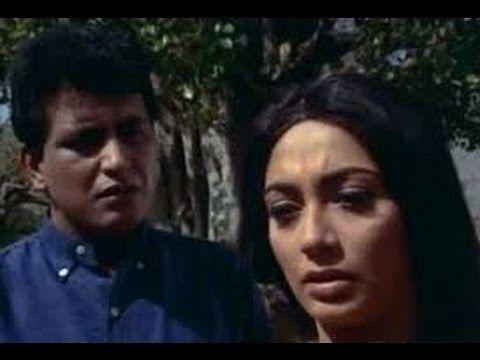 Watch Old Anita - Full HD Hindi Movie   Manoj Kumar   Sadhana   I S Johar   Dhumal watch on  https://free123movies.net/watch-old-anita-full-hd-hindi-movie-manoj-kumar-sadhana-i-s-johar-dhumal/