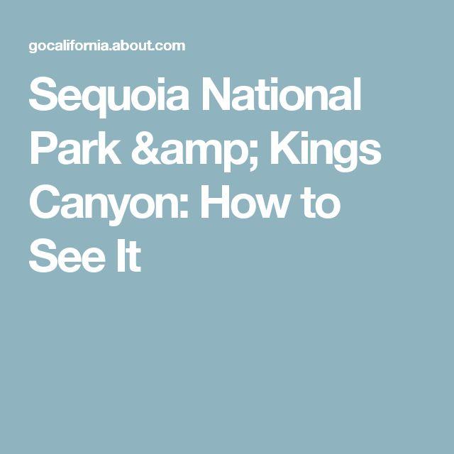 Sequoia National Park & Kings Canyon: How to See It
