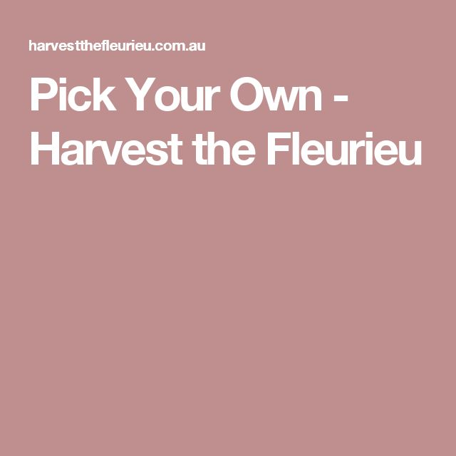 Pick Your Own - Harvest the Fleurieu
